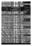 Aufzug 2011 Linolschnitt,  Handdruck,  Auflage: 7 +2 Druck: 135 x 91 cm /  Papier: 158 x 111 cm