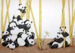 PandasMT a/Papier, 31,5 x 44,0 cm aus 'Ich sehe was ! Siehst du es auch?'Sellier-Verlag 1996                                                                     Preis auf Anfrage