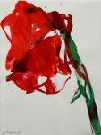 Doppelte Amaryllisblüte 2003Aquarell auf PapierAM 37,6 x 28,6 cmPreis auf Anfrage
